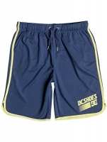 DC Shoes Wendell Short